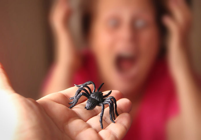 Spider in a hand and a scared woman in the background